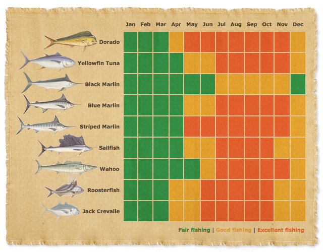 Fish calendar for What fish are in season